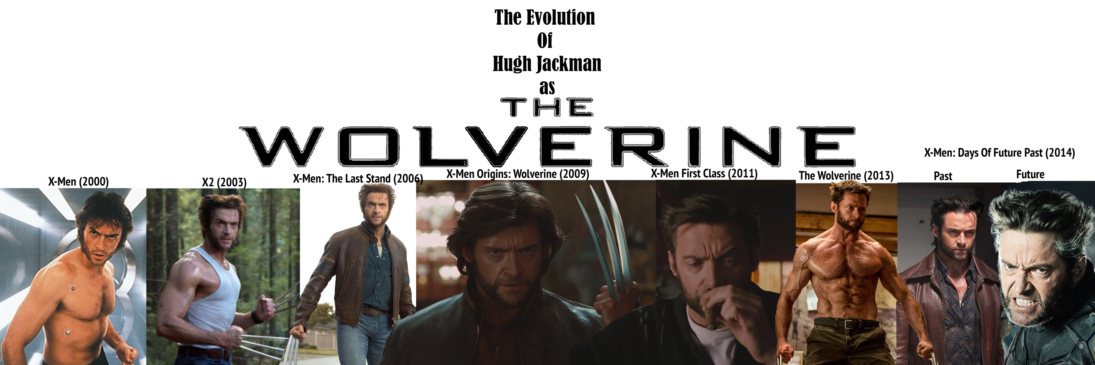 The Evolution Of Wolverine Small