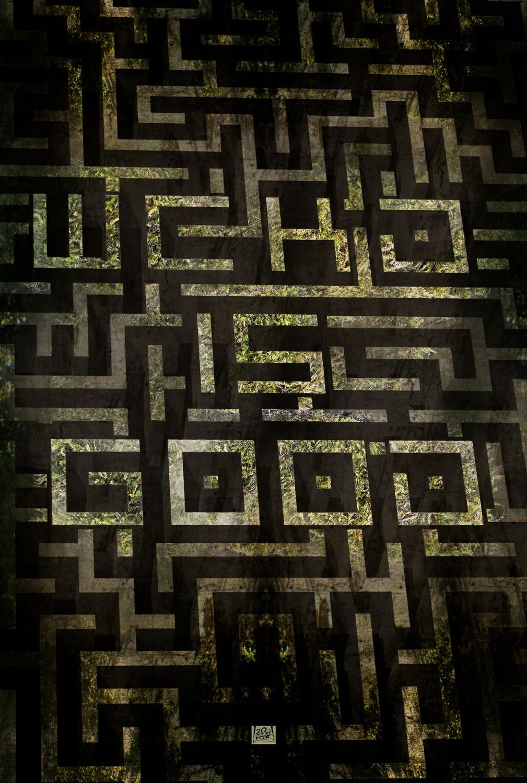 maze_runner_ver10_xlg